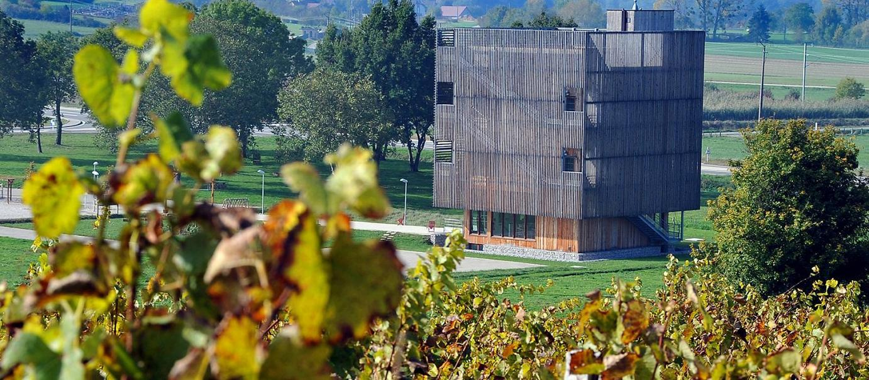 http://www.lacaborde-jura.fr/media/xt-adaptive-images/1382/images/Kidacom/la-caborde-orbagna-aire-viticulturelle.jpg
